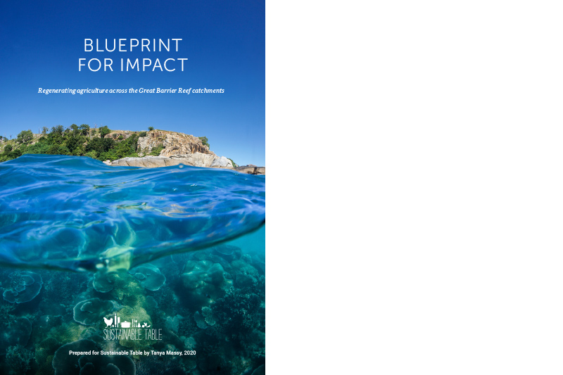 Blueprint for Impact