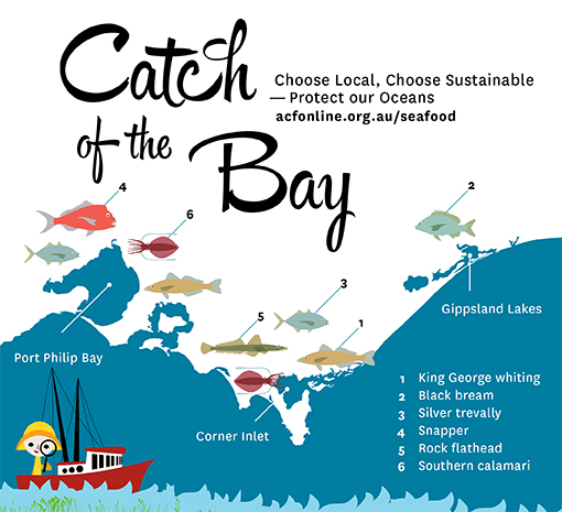 These seafood species are ok to mindfully eat phew for What does sustainable fish mean