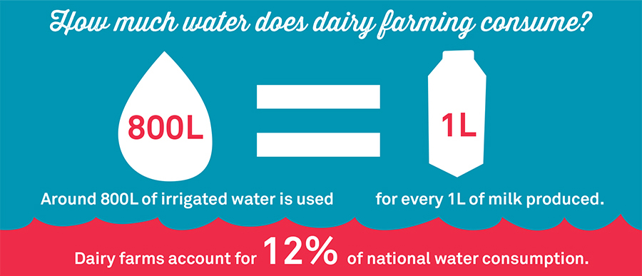 Dairy Reinvented: Sustainable. Kind. Delicious.